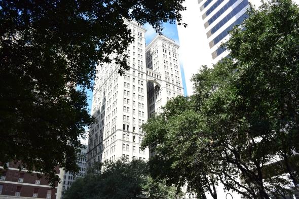 Z korun stromů vyčnívaly vysoké historické budovy