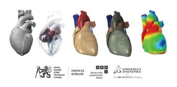 Na digitalizaci lidského srdce spolupracují dvě české univerzity: České vysoké učení technické v Praze a Vysoká škola polytechnická Jihlava