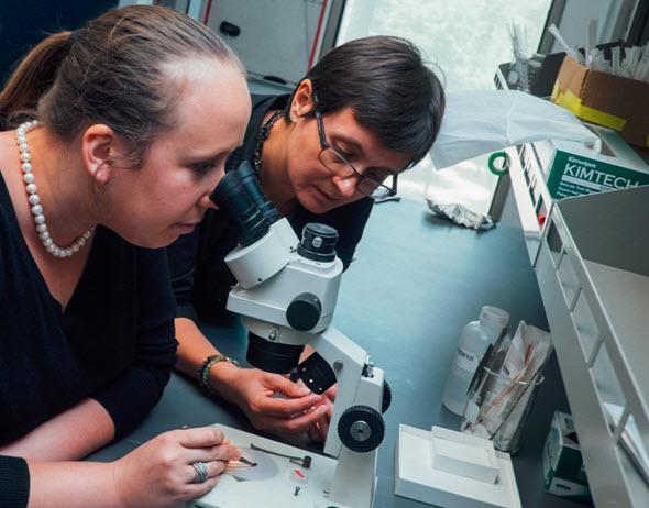 Eteri Svanidze (vlevo) a Emilia Morosan se podílí na výzkumu slitiny titanu a zlata. Foto: Jeff Fitlow (Rice University)