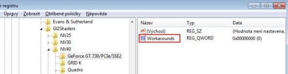 Napište název registru Workarounds.