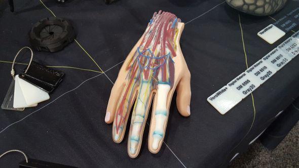 Prototypy mohou být užitečné pro výuku lékařských oborů. Jen se podívejte na detaily a různorodost barev. Foto: Marek Pagáč